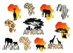 "Nailtattoos ""Africa"", 11 Motive"